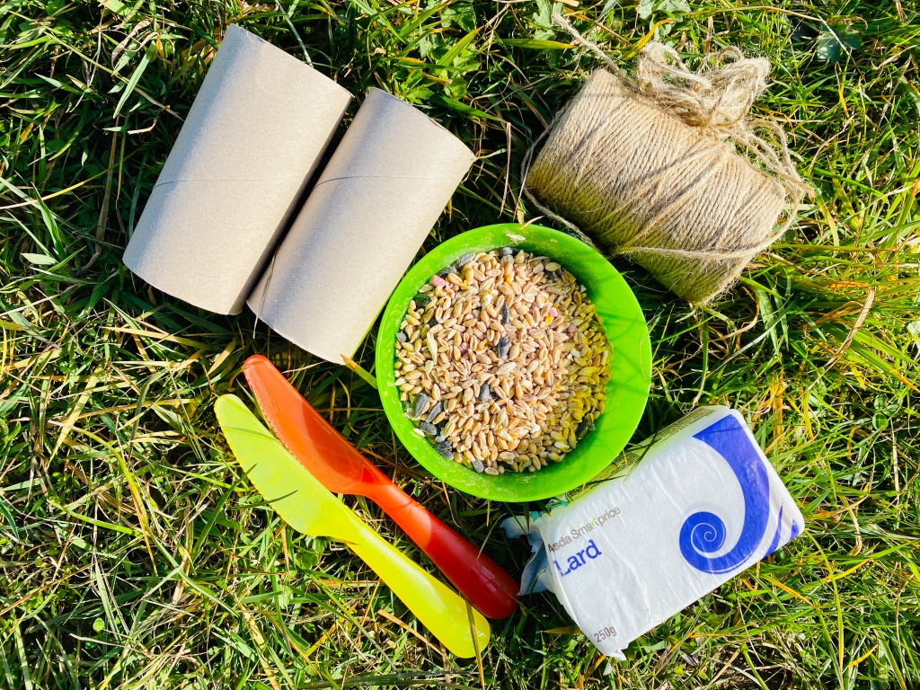 Resources for a homemade bird feeder