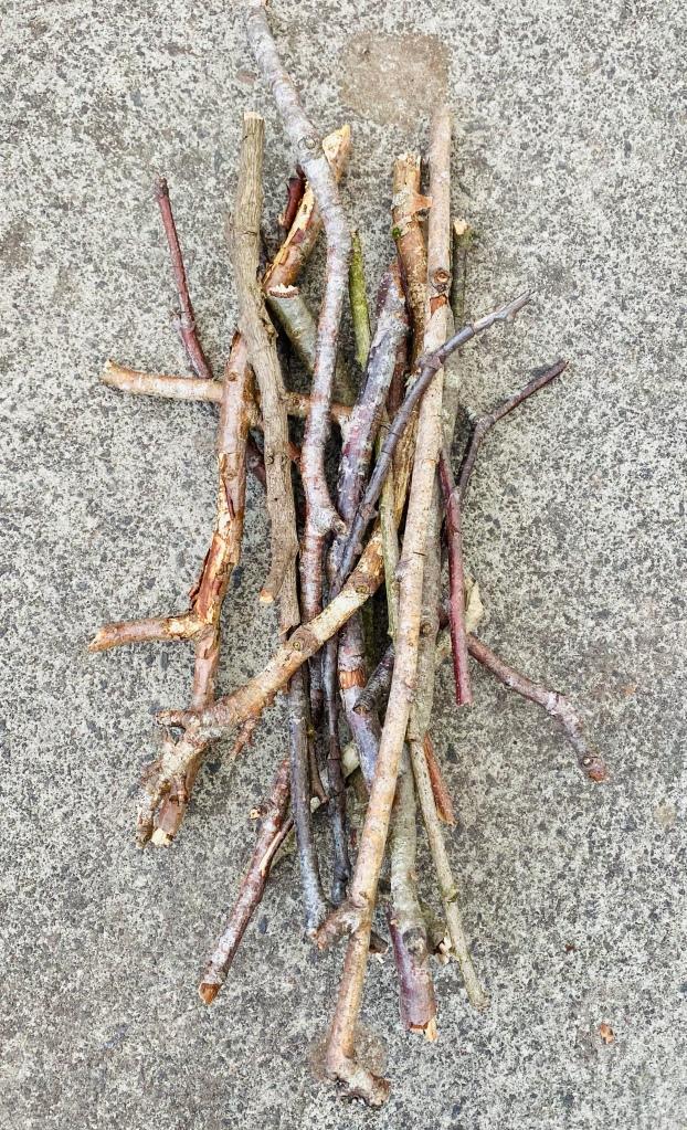 Pile of sticks to make a bug hotel