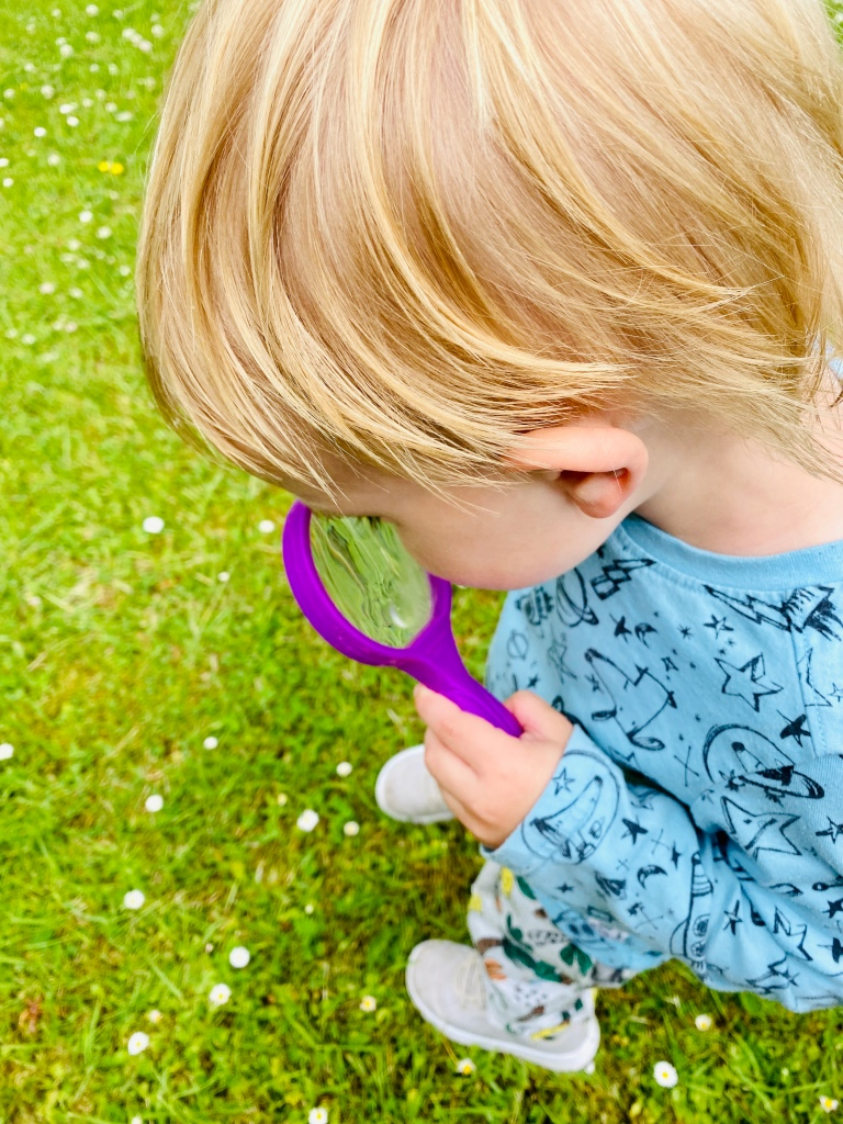 Child using a magnifying glass to search for bugs and insects and spiders